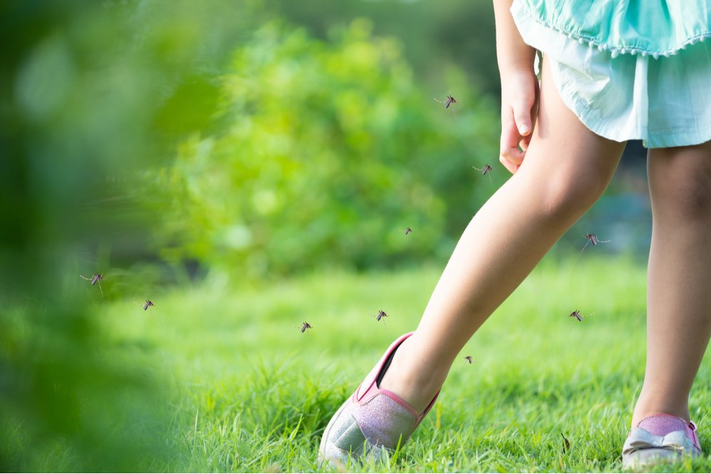 Insect allergy causes and treatment in Atlanta.